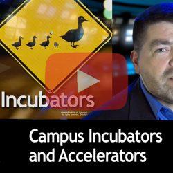 Incubators & Accelerators