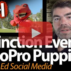 Extinction Events & GoPro Puppies