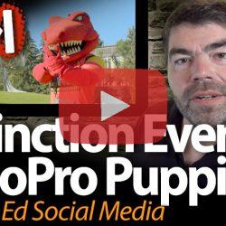 Extinction Events & GoPro Puppies